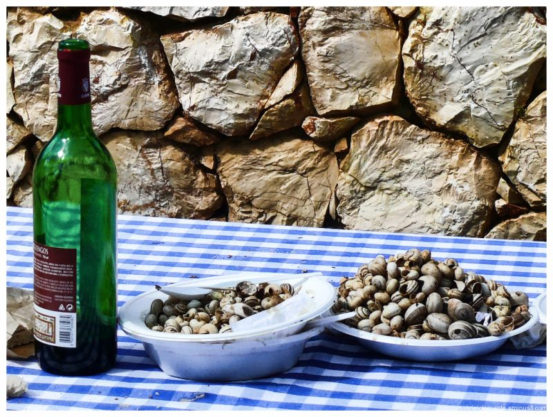 Snails and wine - Portugal Tradition