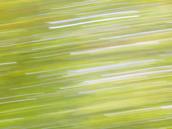 Panning in landscape photography