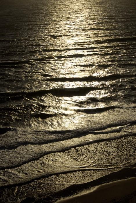 waves fort funston san francisco