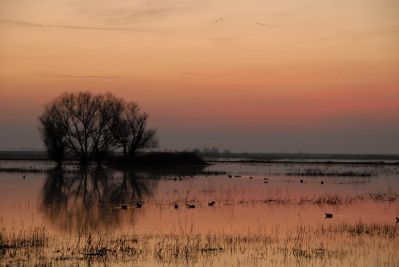 sunset over merced bird reserve california