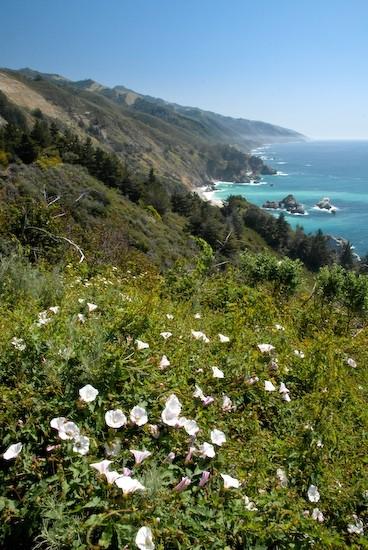 coast big sur california
