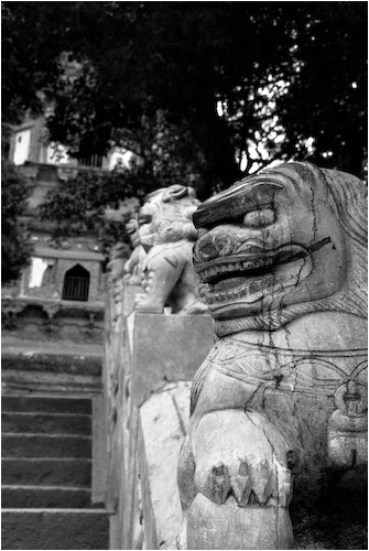 stone lions tiger hill suzhou china
