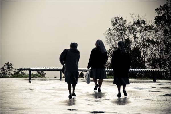 nuns mt. lofty south austalia
