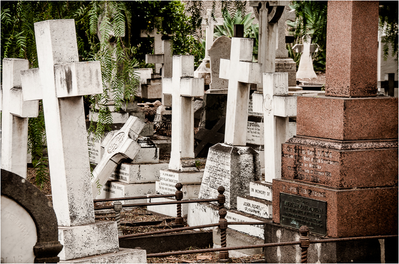 english cemetery funchal madeira