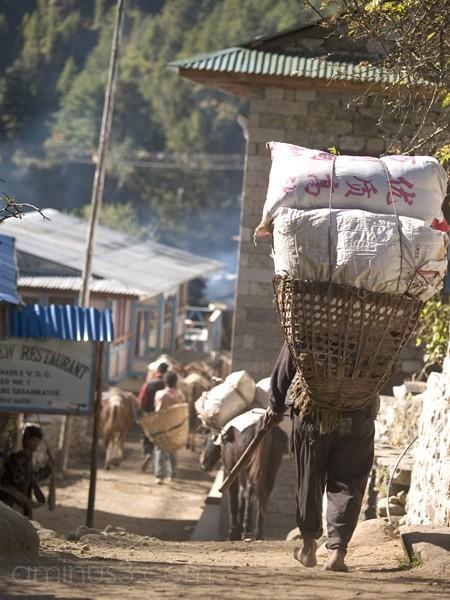 Porter entering Khumbu village