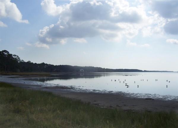 Port St. Joe Bay