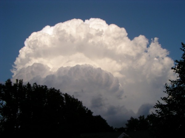 Clamshell Cloud