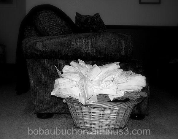 Laundry Basket #1
