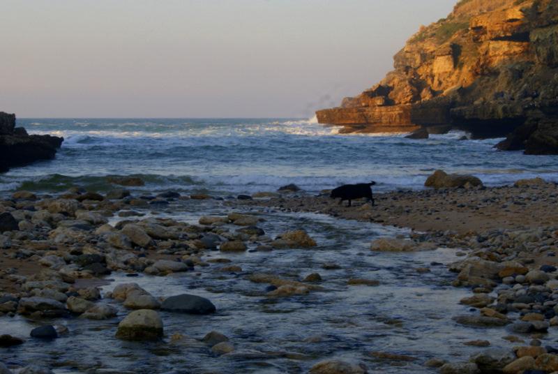 Praia da Samarra II