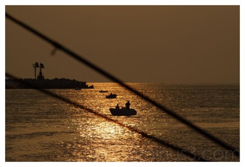 fisheries golden