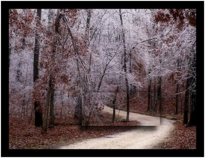Road leading into the woods in ice winter.