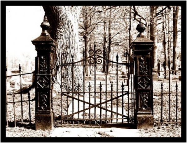 Iron gate leading into a cemetary.