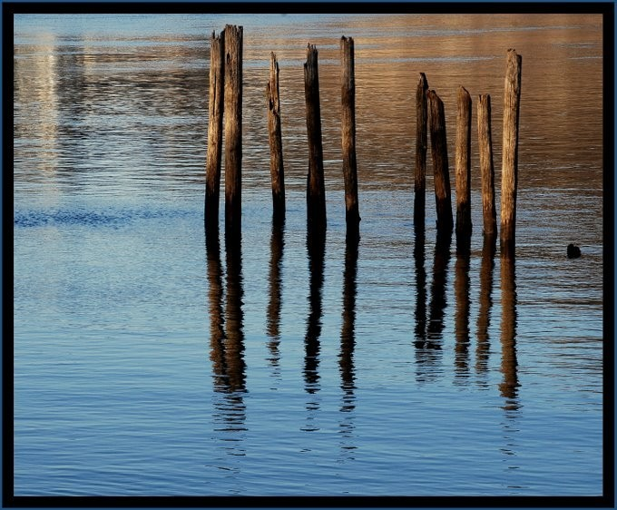 Posts and reflections in the Osage River