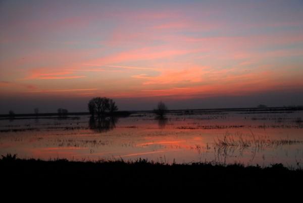 sandy marsh sunset