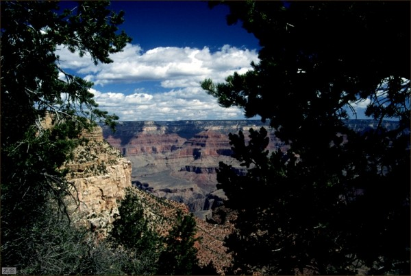 late afternoon in grand canyon