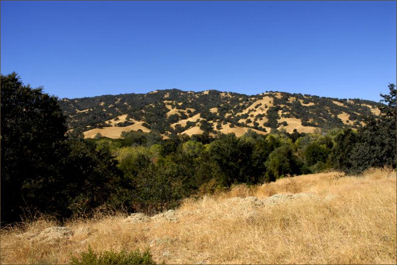 the california coast range