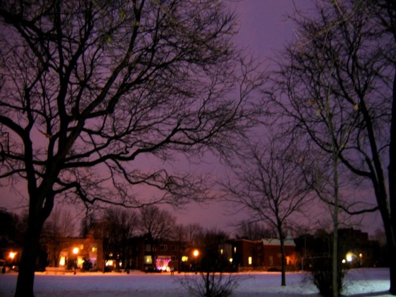 westmount park at dusk