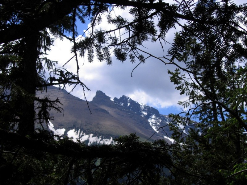 mountain in Waterton Lakes, Alberta
