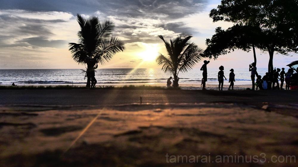 roaming around at sunset