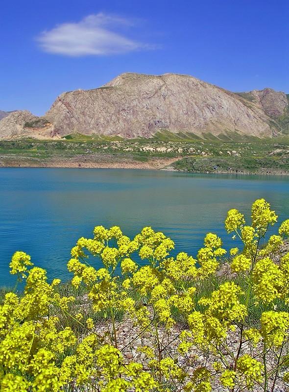 Larr Lake