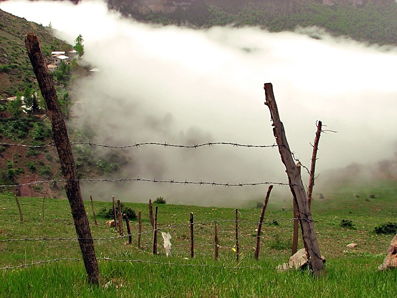Prisoned mist .1.