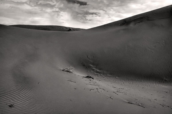 Colorless Desert