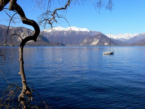 lago maggiore, veduta da pallanza