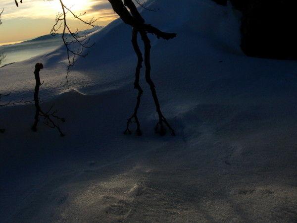neve inverno Morissolo morissolo
