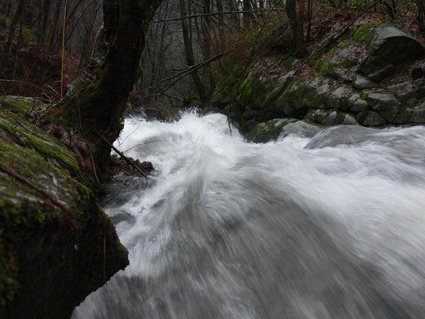 fiume, river, water, acqua