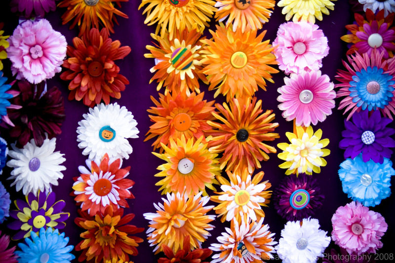 Flower Hair Clips at the Farmers Market