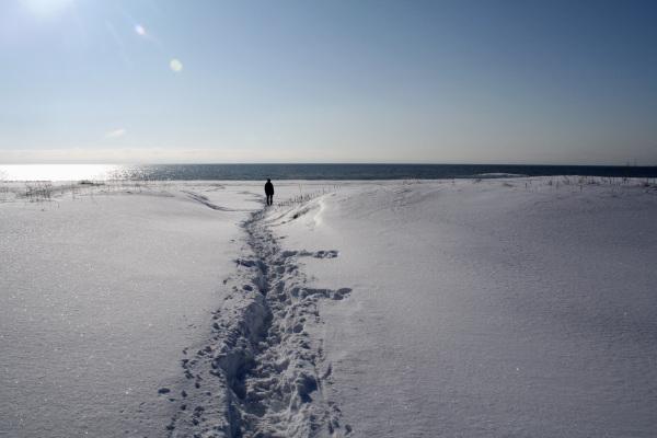 Alone on the beach.