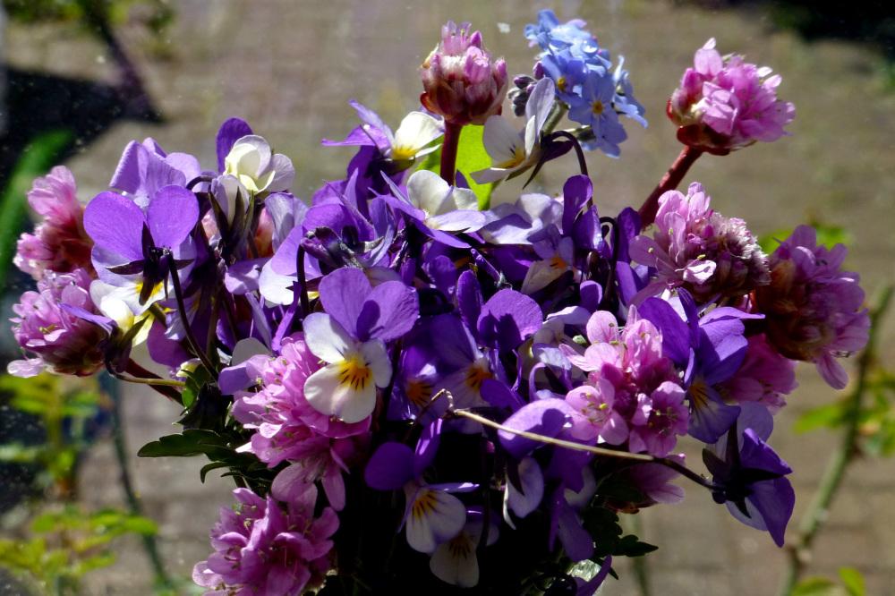 Violets for mother.