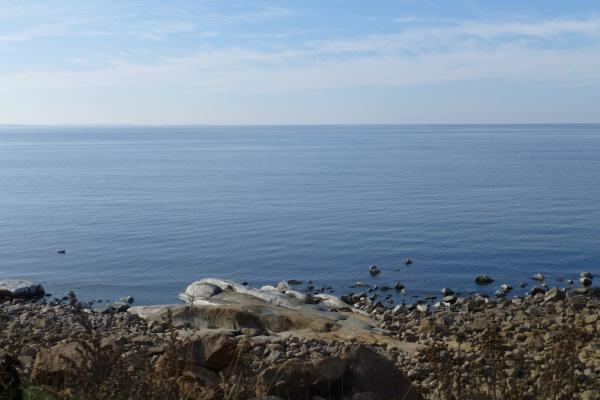 Near the sea.