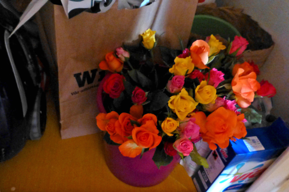 Roses?