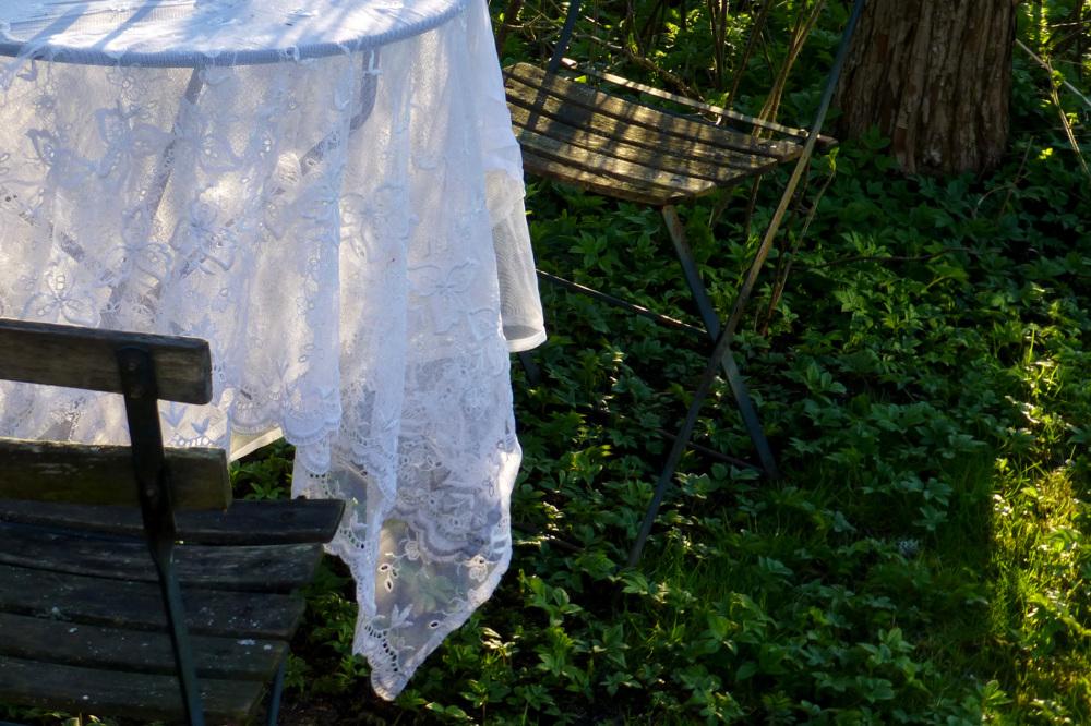 The cloth.