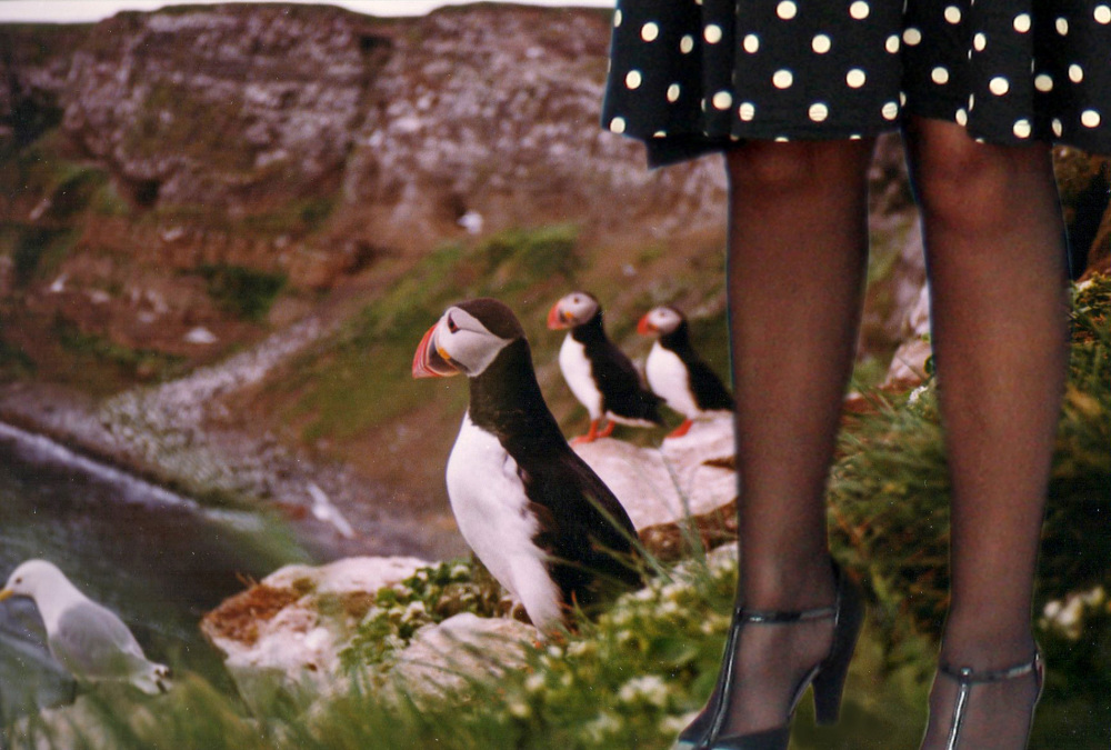 The high-heeled ornithologist.