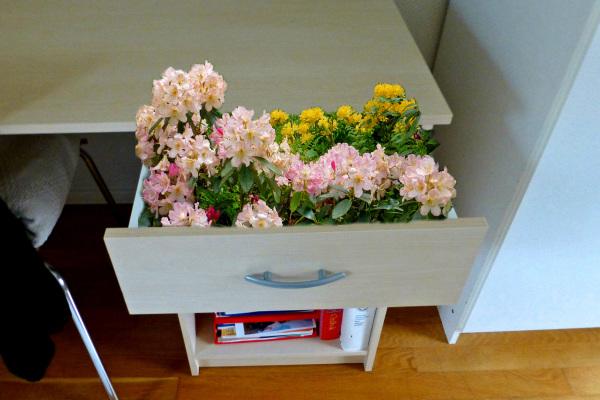 The flower box.