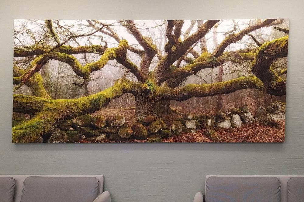 In the waitingroom.