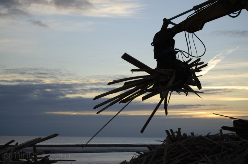 Removing the beached wood at Worthing