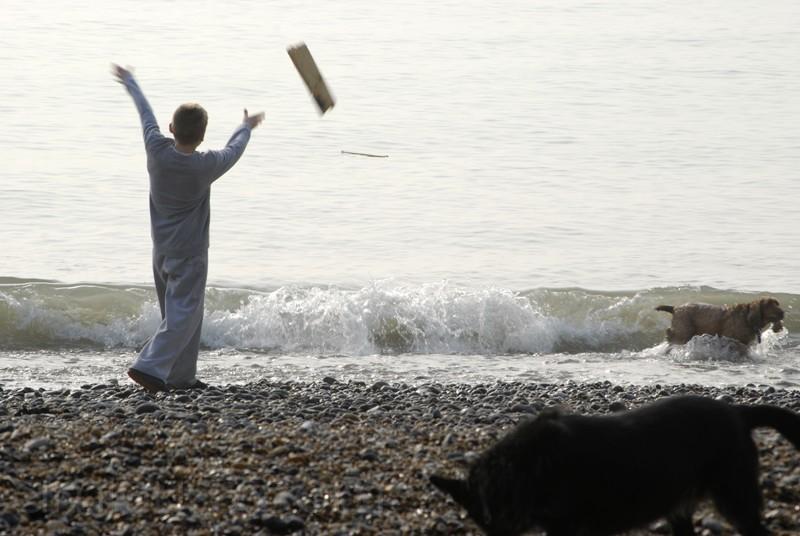 Dogs on the Beach #1