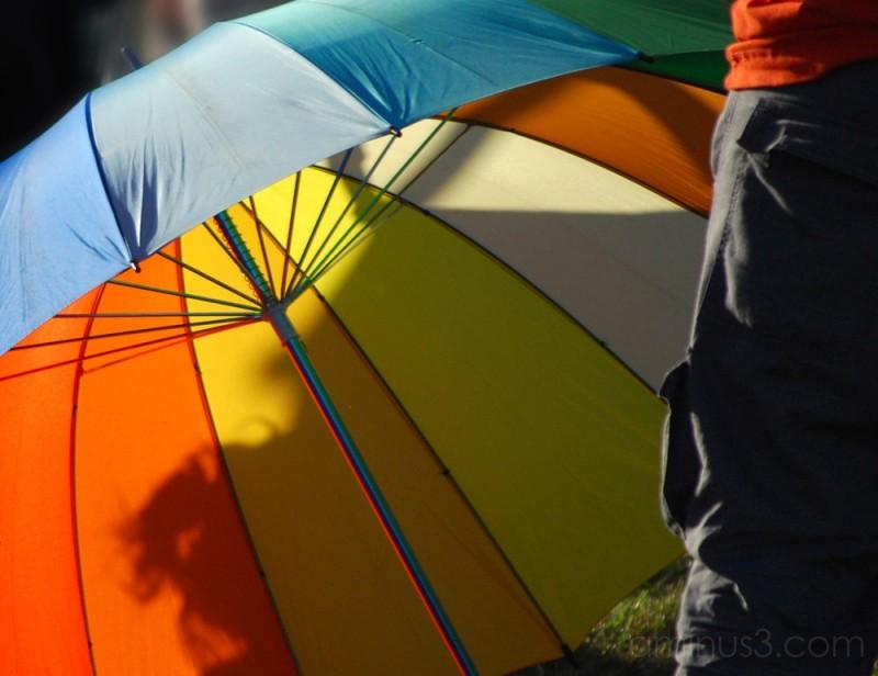 Umbrella#3
