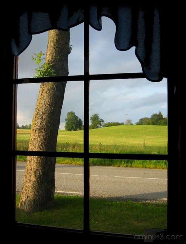 View From A Window / Utsikt från ett fönster