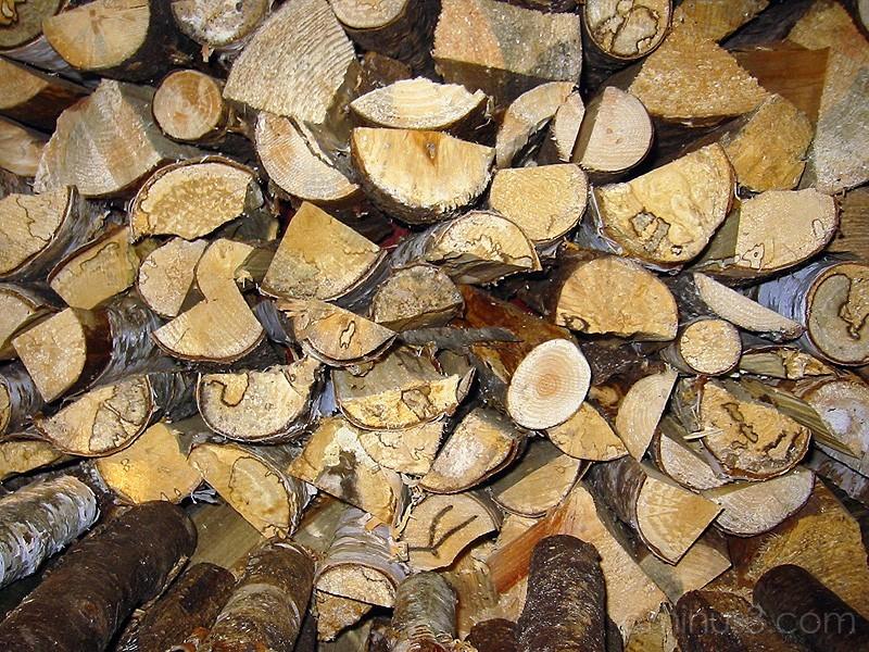 Firewood / Ved för vintern