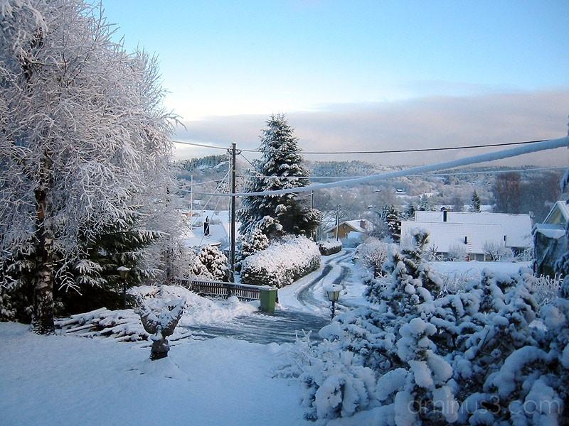 Winter 5 / Vinter 5