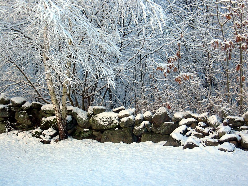 Winter 2 / Vinter 2