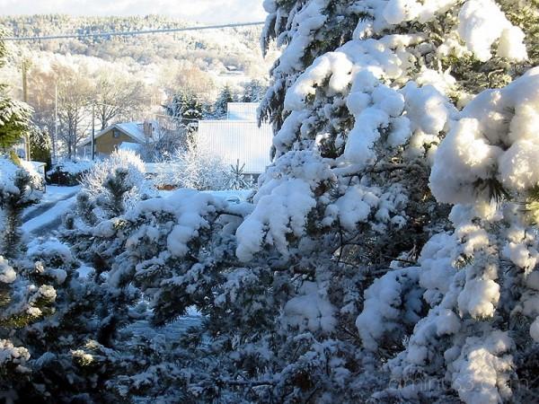 Winter 4 / Vinter 4