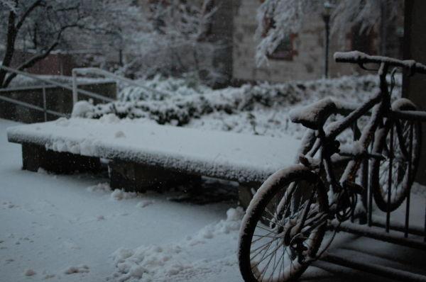Snow in Providence