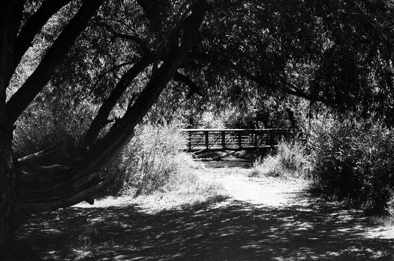 Lair o' the Bear Park