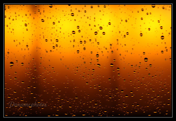 Pluie Orange