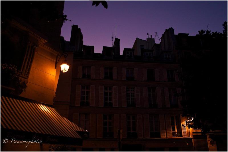 Nuit Violine